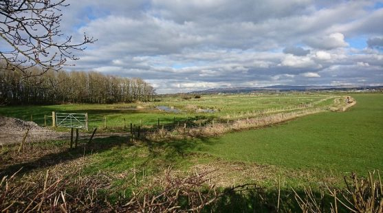 Lake on Moss Wood Caravan Park Walk in Cockerham