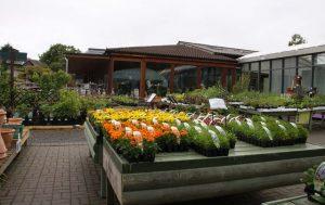 Ashton Hall Garden Centre