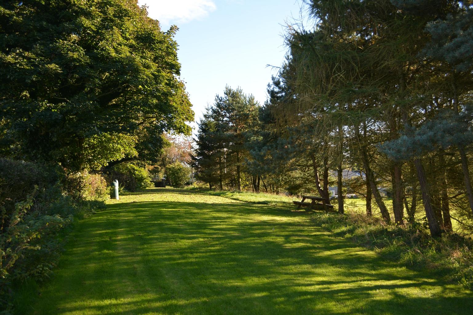Moss Wood Picnic Area